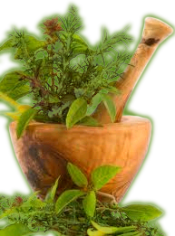 medicinal herbal in a mortar with a pestal